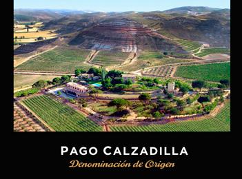 Pago-Calzadillaweb